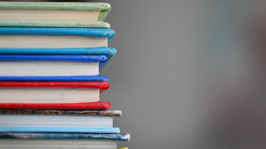 Hoe ontwikkelen zorgleerlingen zich in het reguliere basisonderwijs